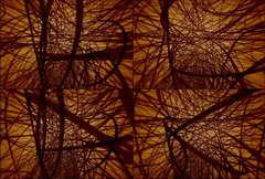 DT0016 神经,神经纤维,医学