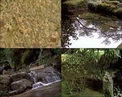 小溪,趵突泉,瀑布,金鱼,荡漾,池塘,景观,滴水,视频素材
