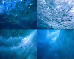 大海,海浪,猛烈,凶猛,力量,游泳,夏天,晴天,水下摄影