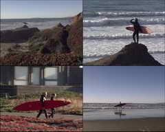 <b>海边,滑板,人物,西方,沙滩</b>