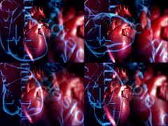 <b>医疗,心脏,医学,跳动,生命,心电图,脉搏</b>