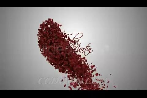 心形,心型,光晕,花瓣飘落,花瓣,相册视频素材