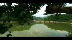 庐山,一角,景色,山中,视频素材