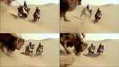骆驼在沙漠中行走,骆驼,沙漠