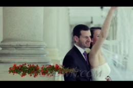 版式,字幕,花丛,花瓣,婚礼,视频素材