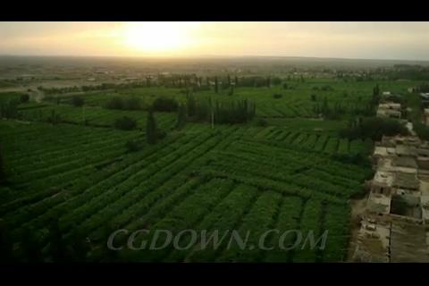 航拍水田,梯田,吐鲁番暗渠,新疆
