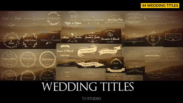 婚礼片头标题文字徽章,婚礼 标题视频素材影视模板