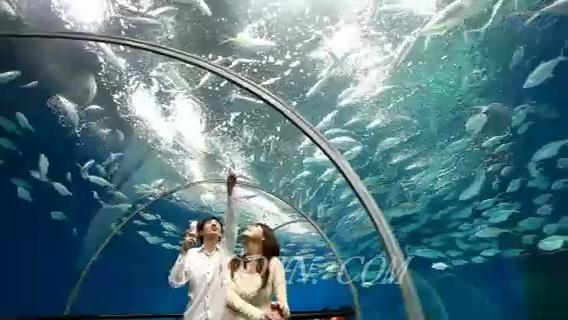 海底世界游玩一组镜头,海底世界