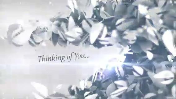 你的logo组成的圣诞树,雪花,圣诞视频素材影视模板