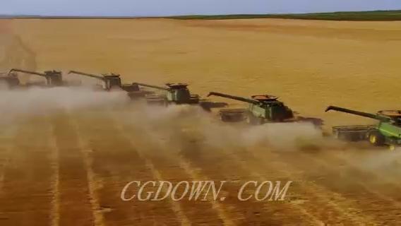 航拍收割机收割水稻稻田