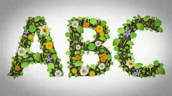 绿色花纹生长叶子的英文字母数字标点符号