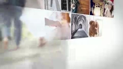 温馨家庭照片拼接圆环浪漫影像