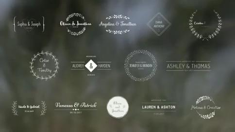 优美动态欧式花纹婚礼字幕,徽章,婚礼,花纹