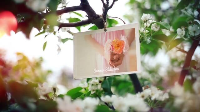 优雅浪漫写实花丛相框相册,相框