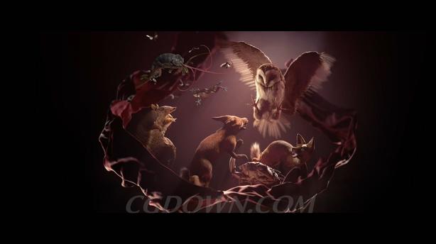 创意色彩斑斓的3d动物昆虫时尚竞争广告