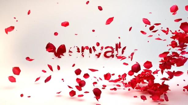 多彩浪漫温馨玫瑰花瓣展示片头,玫瑰