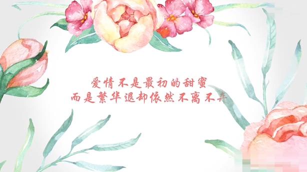 水墨水彩花纹生长爱情记忆视频片头.花纹