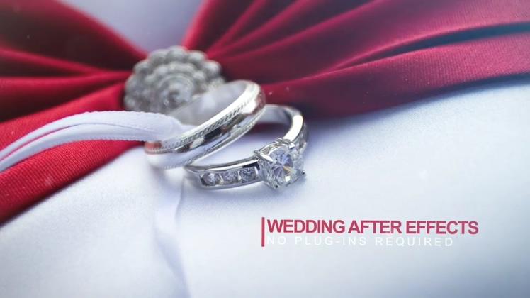 浪漫婚礼玫瑰花瓣飞舞AE模板片头