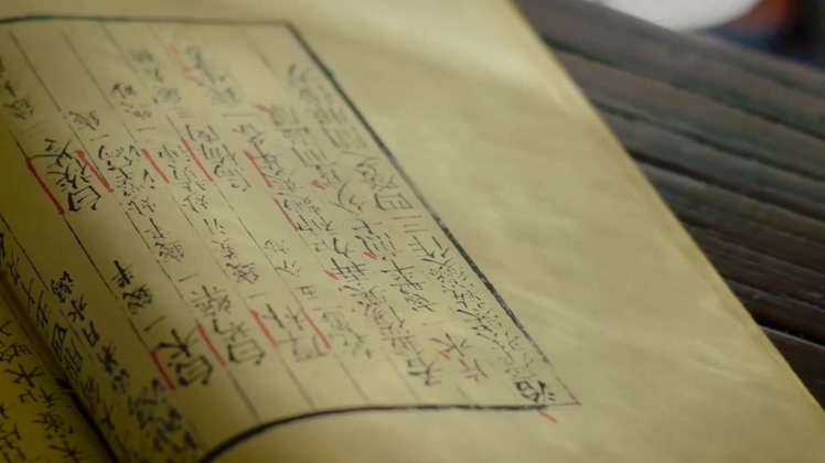 翻阅古书高清视频素材