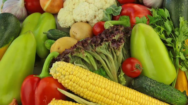 丰富的各种蔬菜特写