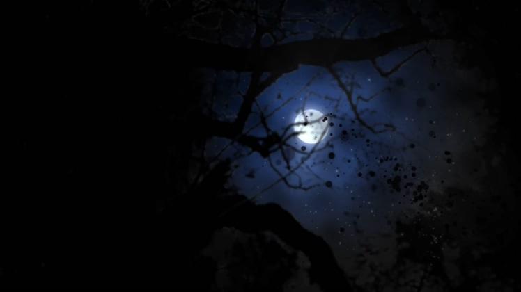 夜黑风高月光下黑色粒子绽放