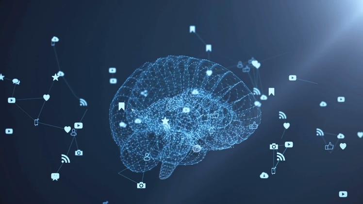 医学3d透视大脑迸发出各种网络创意思想