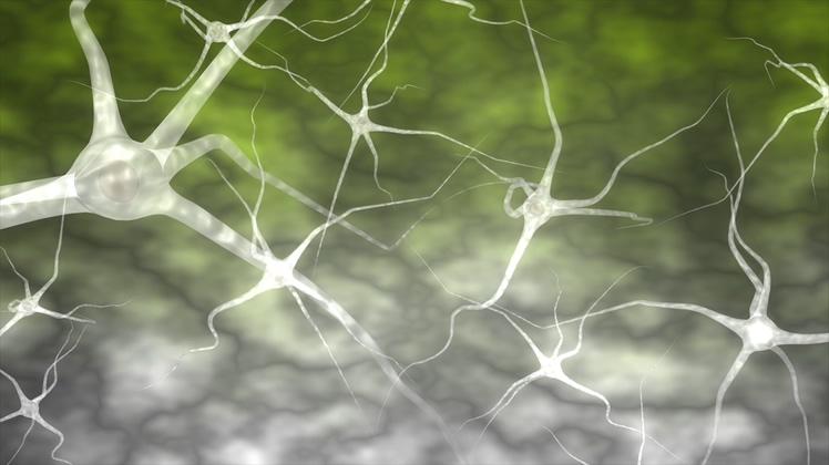 人体大脑神经元连接微观素材