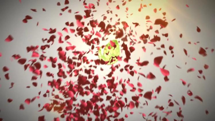 玫瑰,红色,花瓣,飞舞,飘落,标题,婚礼,红色玫瑰花瓣飞舞飘落时尚标题片头视频素材