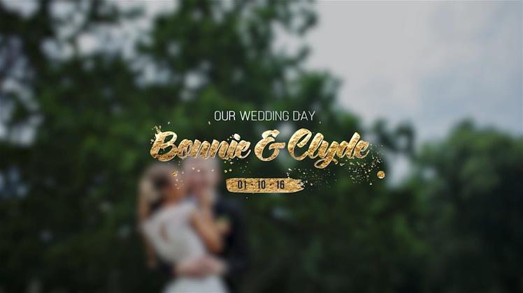 华丽金色婚礼标题片头模板