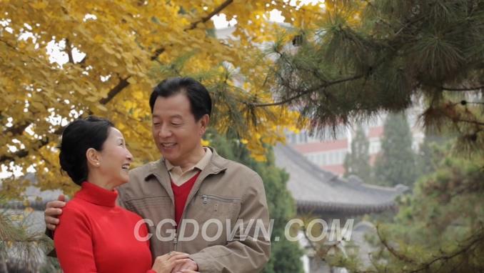 幸福开心老年夫妇开心交谈聊天