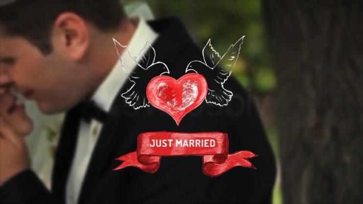 相册,特效,元素,记忆,浪漫,婚礼,爱情,手绘,免费视频素材