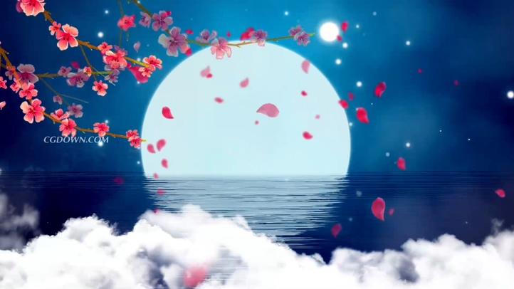 蓝色花开中秋赏月云彩倒影视频素材