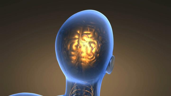 3d人体大脑思想发亮灵感能量机体视频素材影视模板
