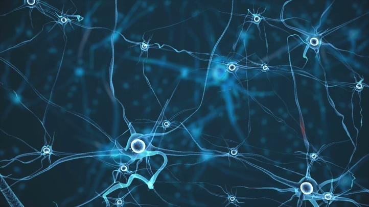 无数神经末梢神经链接视频素材影视模板