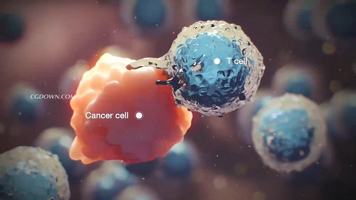 细胞,3d,医学,医疗,科技,癌症,健康,身体,人体,3d效果科技医学癌细胞吞噬影响身体健康视频素材