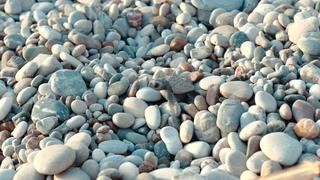 生存,海龟,卵石,爬行,孤独,爬行在海边小卵石的新出生小海龟寻找海源视频素材