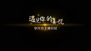 金色,黄金,标题,logo,简洁精致黄金质感标题文字效果视频素材