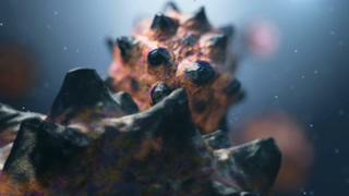 细菌,病毒,医学,研究,在人体中细菌病毒医学动画背景,免费视频素材