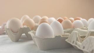 家禽,鸡蛋,营养,食品,来自不同家禽的不同颜色的鸡蛋特写视频素材