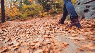 秋天,落叶,散步,失落,森林,在美丽的秋天森林里腿侧拍摄走在秋天叶子的道路视频素材