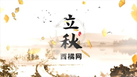 秋天,秋季,秋季秋天风格AE片头视频素材