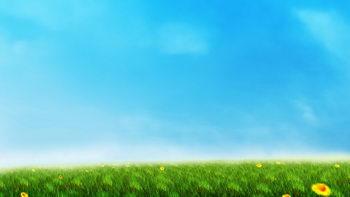 蓝色,春天,朝气,草地,小花,无缝循环五
