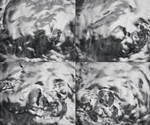 高速摄影,水源,水分,水纹涟漪,水面