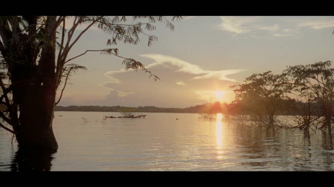 <b>一组绚丽多彩的自然风光,生命奇迹,阳光,森林,河流,热带雨林,田野,瀑布</b>