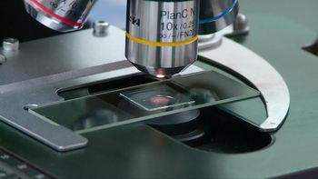 检验,检测,仪表,分析数据,电子显微镜